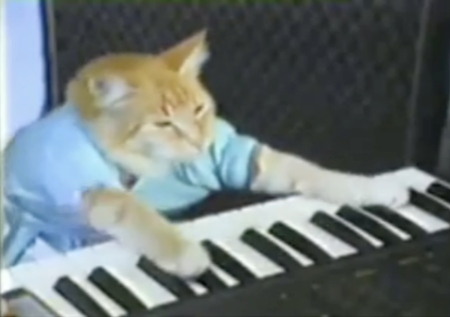 Does Keyboard Cat translate?